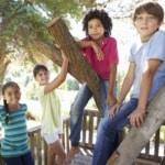 Backyard Fun & Homeowner Insurance