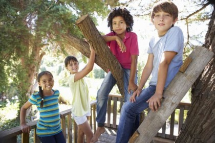 a tree house offers lots of backyard fun for kids